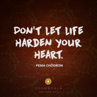 Dont Let Life Harden Your Heart