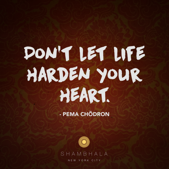 Dont Let Life Harden Your Heart: A Meditation on Bodhichitta