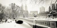 nyc_snow