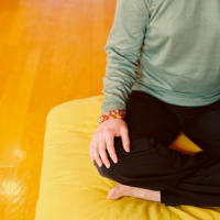 Shambhalanyc Mindfulness NYC